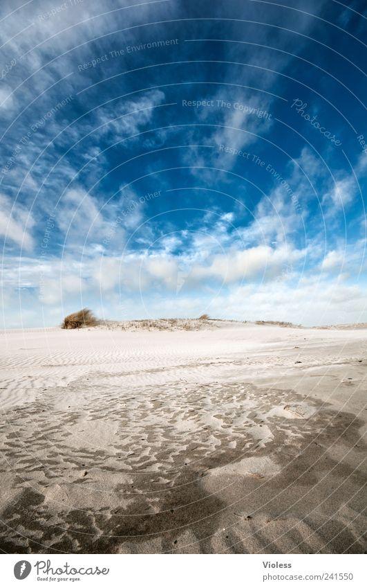 Spiekeroog |...there is no one Himmel blau Sommer Ferien & Urlaub & Reisen Wolken Erholung Sand Landschaft Insel Nordsee Spiekeroog Strandspaziergang
