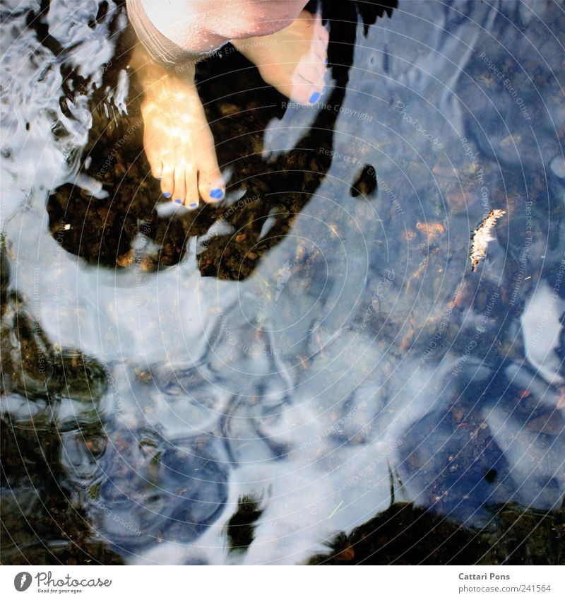 umgeben blau Wasser Einsamkeit kalt feminin Beine Fuß gehen warten nass stehen Boden einzigartig Fluss tauchen dünn
