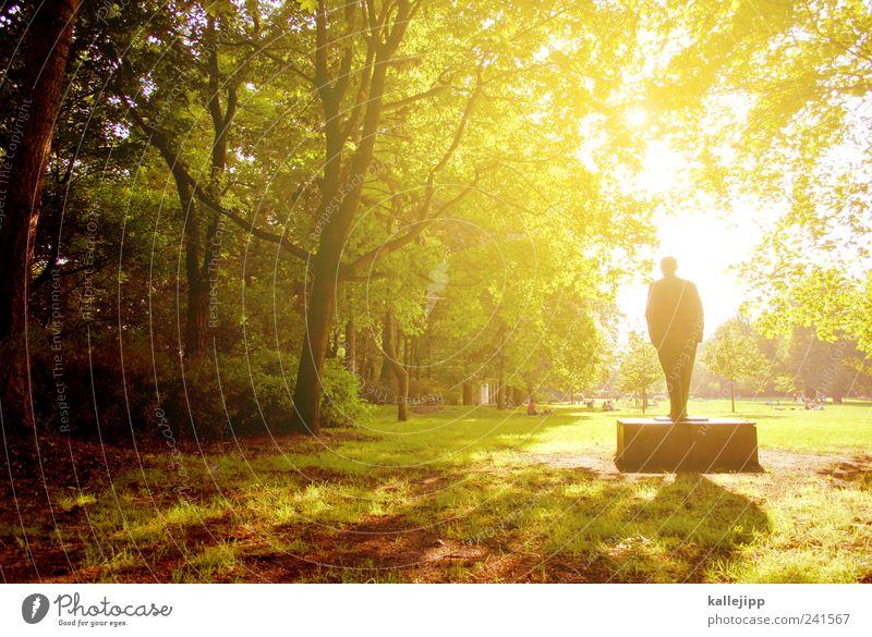 bürgerpark Mensch Natur Pflanze Sommer Baum Landschaft Ferne Umwelt Wiese Gras Spielen Kunst Park Freizeit & Hobby Lifestyle Klima