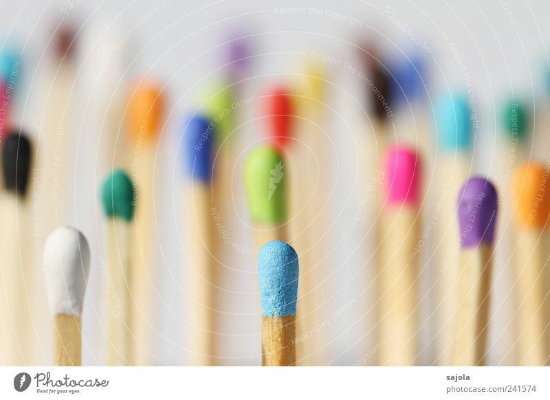 leader in blue Holz mehrere stehen Team Gesellschaft (Soziologie) viele Zusammenhalt Mischung Verschiedenheit Streichholz Teamwork vertikal Vielfältig Integration