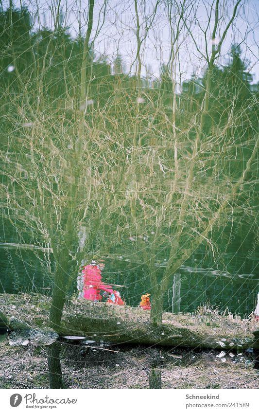 Wandertag Mensch Natur Wasser Baum Pflanze Tier Wald See Park rosa Umwelt Spaziergang entdecken verdreht