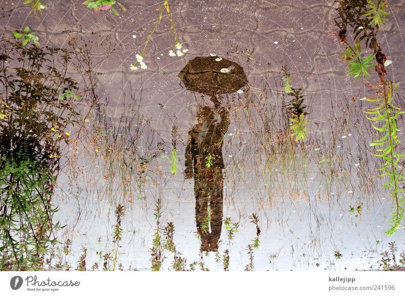mary poppins Mensch Natur Wasser Wolken Erwachsene Landschaft Umwelt springen Regen Wetter Klima maskulin Fliege Regenschirm Schweben Pfütze