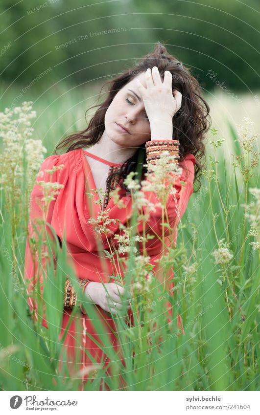 behutsam Mensch Natur Jugendliche grün schön Pflanze rot ruhig Erholung Leben feminin Umwelt Gras Blüte Stil Erwachsene