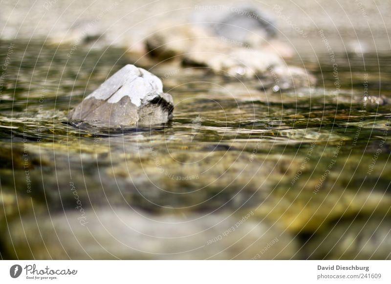 Gegen den Strom Natur weiß grün Landschaft Stein braun Wellen Fluss Flussufer seicht Wasseroberfläche Gewässer Strömung