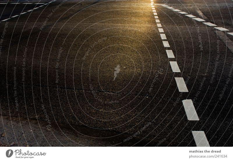 ES IST GRÜN Einsamkeit gelb Straße dunkel Wärme Linie Schilder & Markierungen Verkehr leer Streifen Hinweisschild Asphalt Verkehrswege Ampel Fußgänger