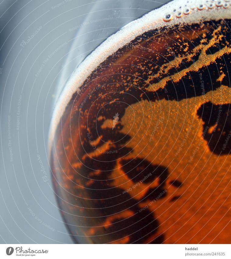 Kontinente Getränk trinken Alkohol Bier Glas blond Coolness nass rund gelb gold Schaumblase Weinglas Farbfoto Innenaufnahme Nahaufnahme abstrakt Menschenleer