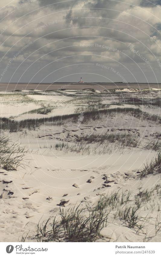 Wattenmeer Natur Himmel Sommer Strand Wolken Ferne dunkel kalt Gras träumen Sand Regen Landschaft Wind Macht Sträucher
