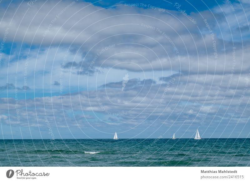 Sailing Ferien & Urlaub & Reisen Ausflug Sommer Sommerurlaub Meer Wassersport Segeln Landschaft Himmel Wolken Horizont Schönes Wetter Wellen Küste Ostsee