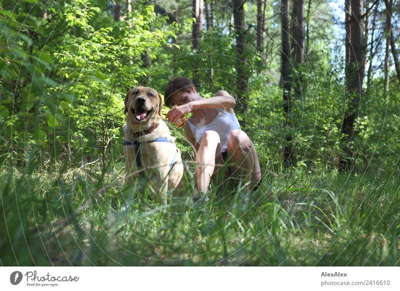 blonder Labrador mit Frau auf einer Lichtung Natur Jugendliche Junge Frau Sommer Pflanze schön Baum Erholung Freude Wald 18-30 Jahre Erwachsene natürlich Gras