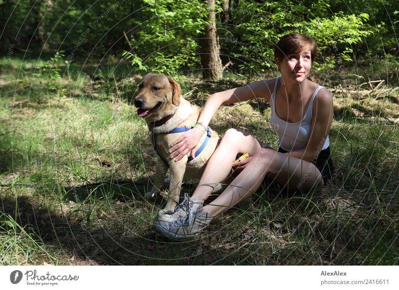 Frau mit blondem Labrador auf der Lichtung Natur Jugendliche Junge Frau Pflanze schön Baum Freude Wald 18-30 Jahre Erwachsene Gras Ausflug ästhetisch sitzen