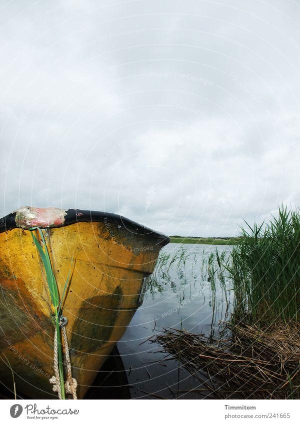 Wenn jetzt Sommer wär! Himmel Natur Wasser Pflanze Ferien & Urlaub & Reisen Freude Wolken gelb Erholung Umwelt Landschaft Gefühle Stimmung Wasserfahrzeug