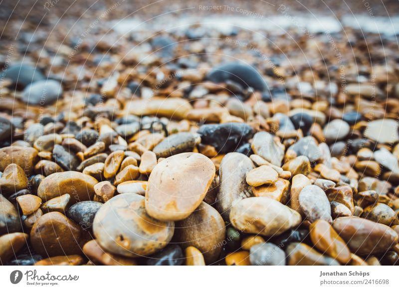 Steinstrand in England Umwelt Natur Landschaft fest Brighton Strand Strandspaziergang nass kalt rund Meer Detailaufnahme achtsam ansammeln finden hart