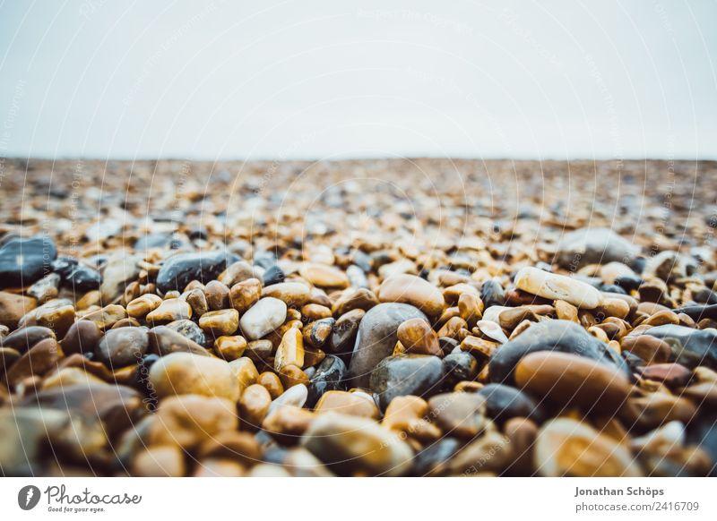 Steinstrand in Brighton, England Umwelt Natur Landschaft fest Strand Strandspaziergang nass kalt rund Meer Detailaufnahme achtsam ansammeln finden hart