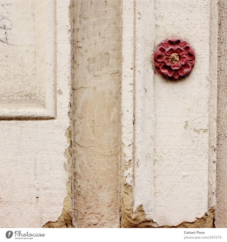 ein Hauch von Freundlichkeit alt schön Blume rot Einsamkeit Wand Blüte Stil Mauer Kunst Stein Design elegant einzeln einzigartig