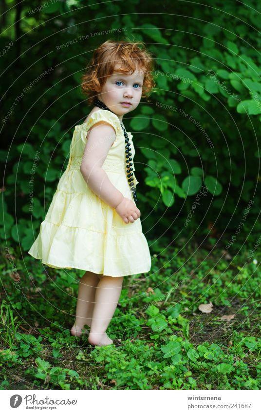 Mensch Kind Natur grün Mädchen gelb Gras Garten Park Beginn Sträucher einzigartig Kleid geheimnisvoll Kleinkind Inspiration