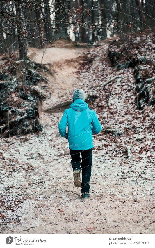 Mensch Natur Jugendliche Mann Junger Mann Baum Erholung Winter Wald Erwachsene Lifestyle Gesundheit Herbst Sport Bewegung Freizeit & Hobby