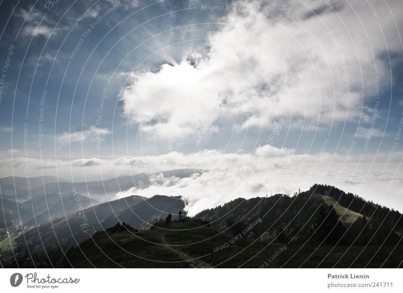 Über uns der Himmel Natur Pflanze Ferien & Urlaub & Reisen Wolken Ferne Wald Freiheit Umwelt Berge u. Gebirge Landschaft Wetter Freizeit & Hobby Horizont