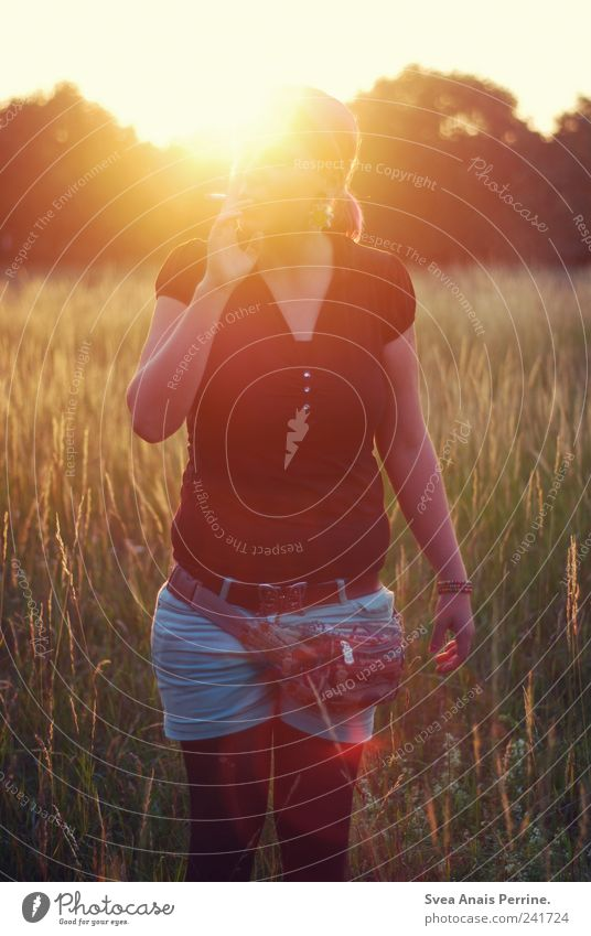 sommer. Mensch Jugendliche Sommer Erwachsene Umwelt feminin 18-30 Jahre T-Shirt Rauchen Junge Frau Schönes Wetter genießen Zopf Gegenlicht Sonnenuntergang