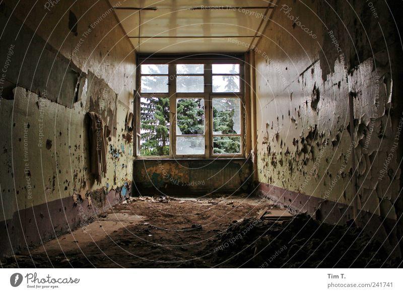 Staub liegt auf der Zeit Bernau Dorf Menschenleer Haus Traumhaus Ruine Bauwerk Gebäude Architektur Mauer Wand Fenster Menschlichkeit Wahrheit Heimweh