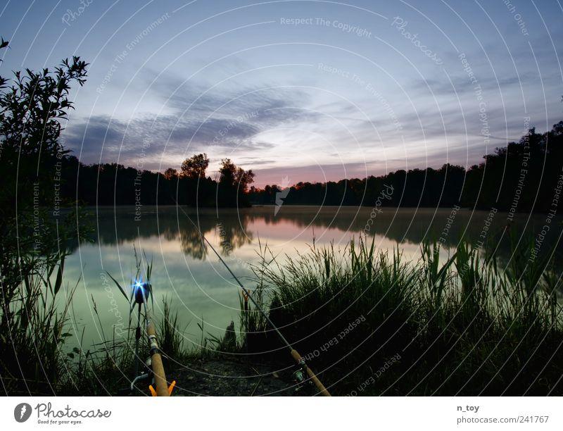 more silence Natur Landschaft Wasser Himmel Wolken Moor Sumpf Teich See Erholung blau grün ruhig Einsamkeit Angeln Angelrute Bayern Morgendämmerung Fisch Angler