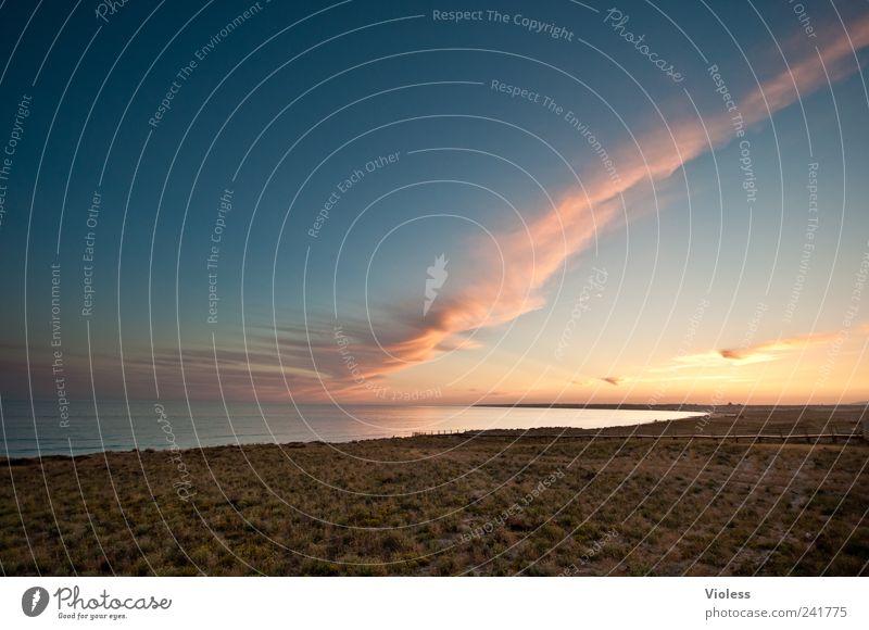 ....end of day Wasser Strand Ferien & Urlaub & Reisen ruhig Erholung Sand Landschaft Stimmung Lebensfreude Portugal Algarve