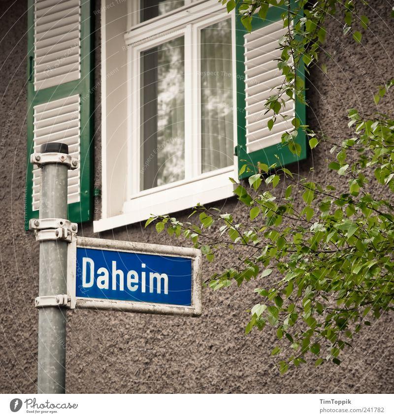 Daheim grün Haus Straße Wand Fenster Wohnung Schilder & Markierungen Häusliches Leben Idylle Gardine Heimat Nachbar Heimweh Fensterladen Straßennamenschild Wohnsiedlung