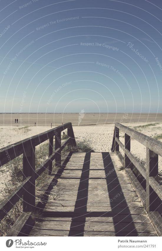 Tideland Himmel Natur blau Sommer Strand Ferne Erholung Umwelt Landschaft Holz Gras Sand Küste träumen Wind gold