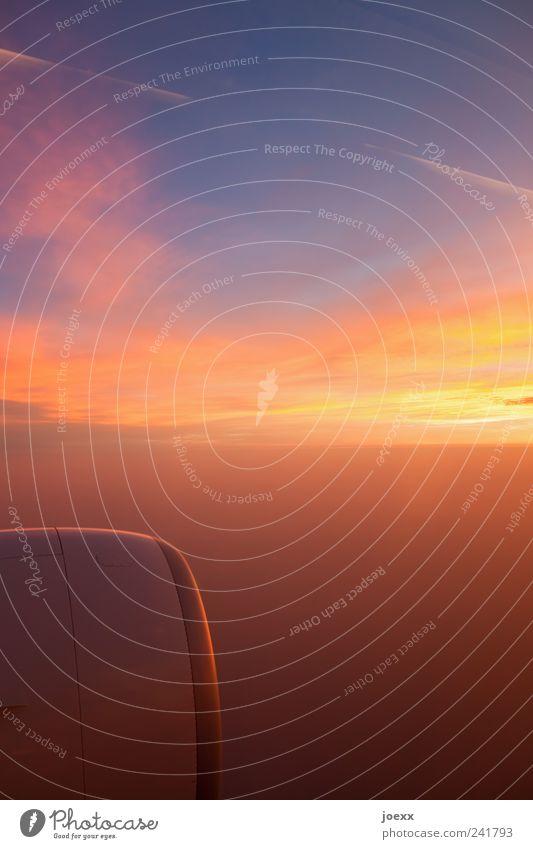 Weg Umwelt nur Himmel Wolken Flugzeug fliegen hell schön blau gelb rot ruhig Ferien & Urlaub & Reisen Ziel Antrieb Düsentriebwerk Triebwerke Luftverkehr