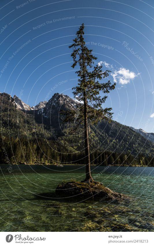 Alleinstellungsmerkmal Himmel Natur Ferien & Urlaub & Reisen Sommer grün Landschaft Baum Einsamkeit Berge u. Gebirge Religion & Glaube See Felsen Ausflug