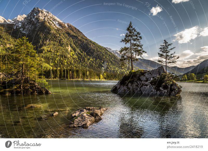 genügsam Himmel Natur Ferien & Urlaub & Reisen Sommer Pflanze Landschaft Baum ruhig Berge u. Gebirge Umwelt Frühling See Felsen Ausflug Idylle Insel