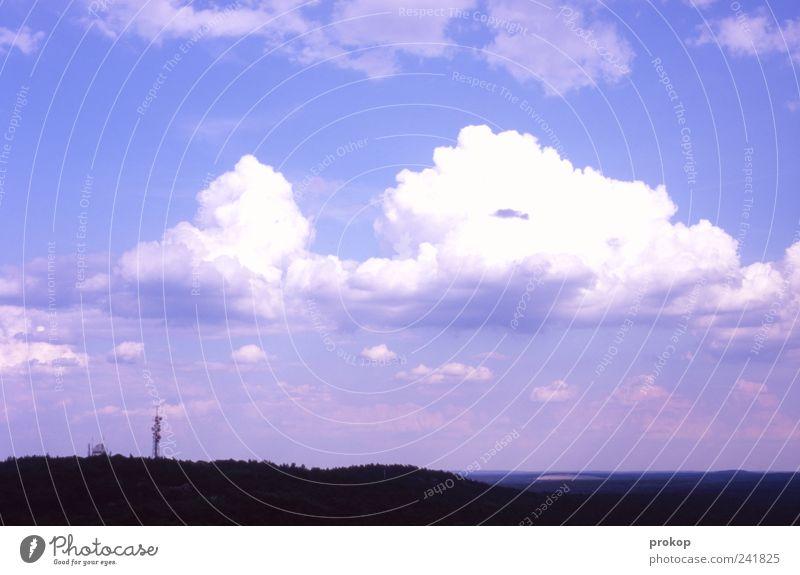 Natur und Technik Umwelt Landschaft Himmel Wolken Klima Klimawandel Schönes Wetter Wald Ferne Horizont Telefonmast Unendlichkeit Idylle Farbfoto Außenaufnahme