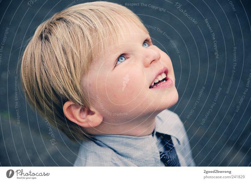 alles gute kommt von oben Mensch Kind Gesicht Auge oben Junge Kopf Denken Kindheit blond Haut warten natürlich Nase frei ästhetisch