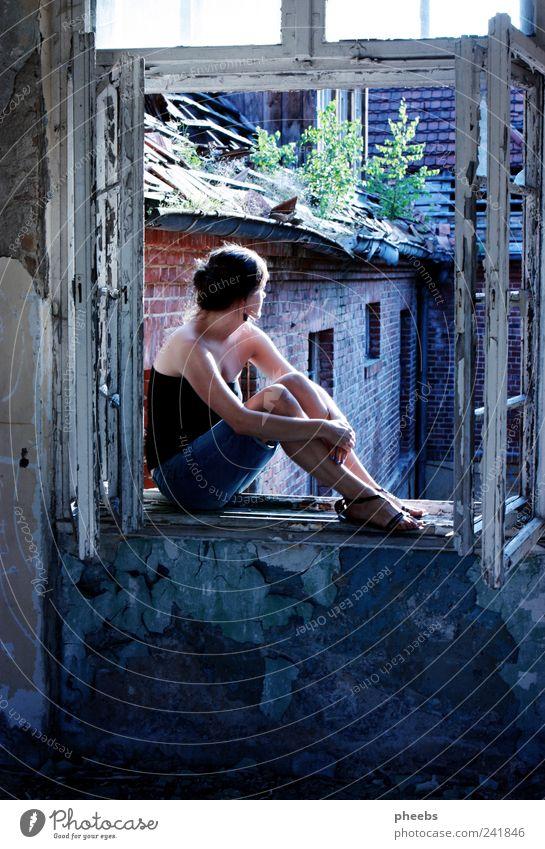 utopia Frau Mensch alt Pflanze Sonne Sommer Haus Fenster Gebäude Aussicht Demontage
