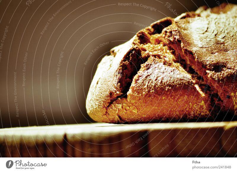 Krustig Lebensmittel Brot Gesundheit lecker Roggenbrot Krustenbrot knusprig Mehl Backwaren Farbfoto Innenaufnahme Nahaufnahme Textfreiraum links