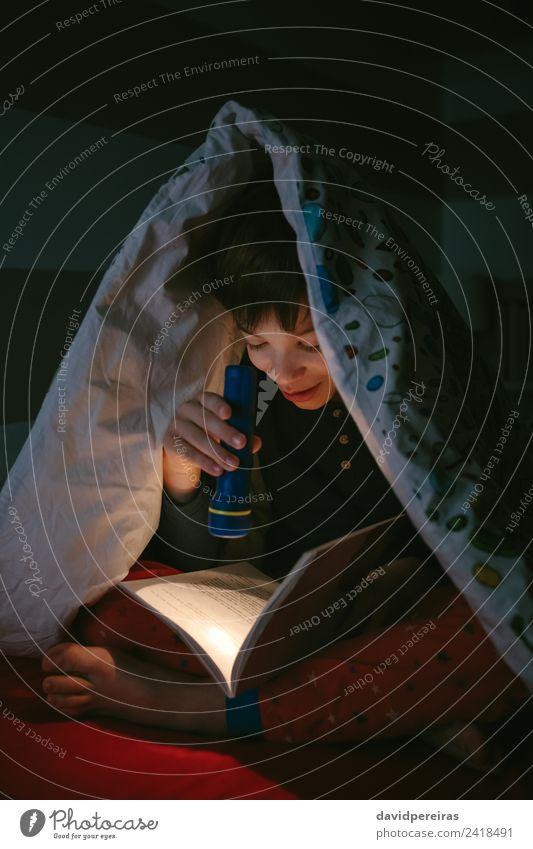 Junge liest mit einer Taschenlampe Freude Glück schön ruhig Freizeit & Hobby lesen Schlafzimmer Kind Mensch Mann Erwachsene Kindheit Buch Lächeln schlafen