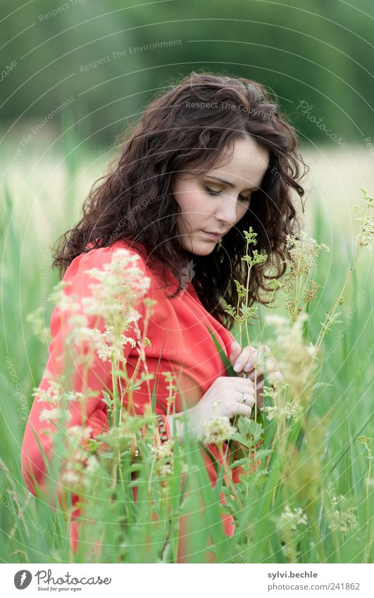 behutsam II Mensch Natur Jugendliche grün schön Pflanze rot Sommer ruhig Leben feminin Umwelt Gras Blüte Stil Erwachsene