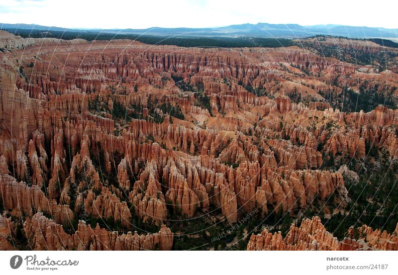 bryce [1] Schlucht Nationalpark Amerika Südwest USA Perspektive Felsen Stein Berge u. Gebirge Gesteinsformationen außergewöhnlich Panorama (Aussicht)