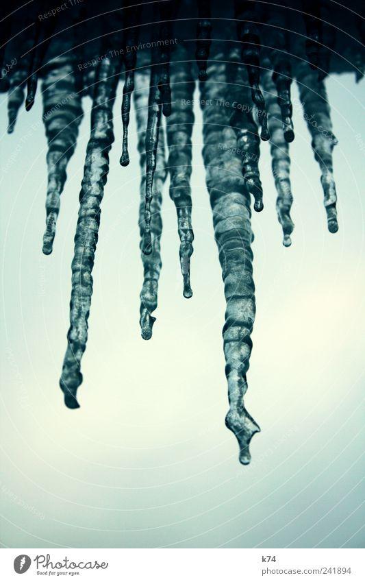 ice Umwelt Natur Eis Frost frieren kalt blau Eiszapfen hängen gefroren Wasser Himmel Farbfoto Gedeckte Farben Außenaufnahme Nahaufnahme Menschenleer