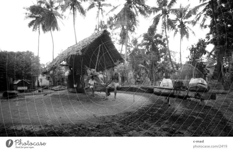 Ölmühle - Sri Lanka Arbeit & Erwerbstätigkeit Los Angeles Mensch Erdöl Schwarzweißfoto