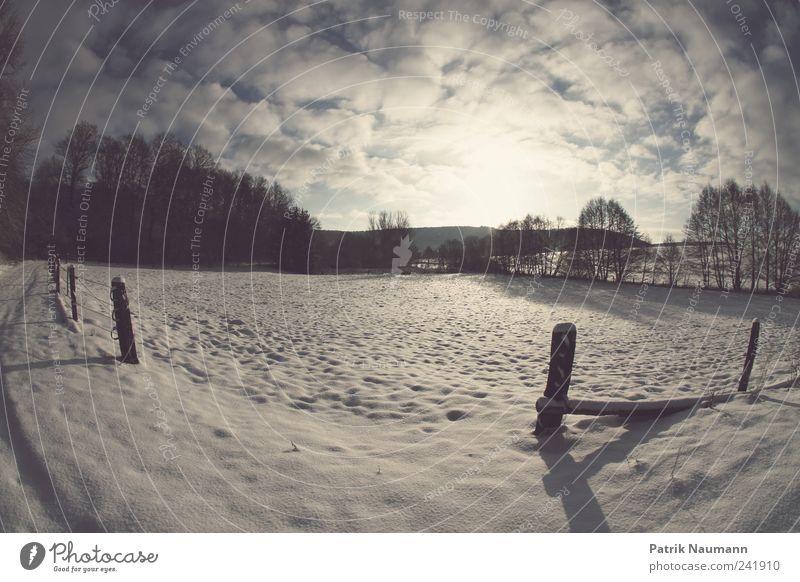 wintriness Landschaft Wolken Sonnenlicht Winter Schönes Wetter Eis Frost Schnee leuchten wandern dunkel frisch glänzend kalt schön blau weiß Gefühle ruhig