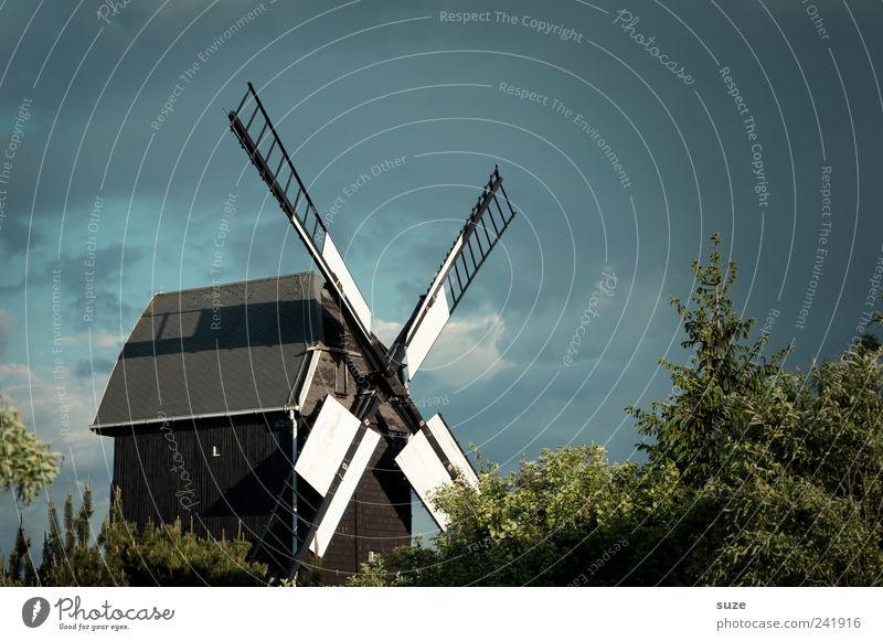 Mühle Landwirtschaft Forstwirtschaft Handwerk Umwelt Natur Landschaft Himmel Wetter Baum Sträucher Bauwerk Gebäude alt historisch Landleben Windmühle Tradition