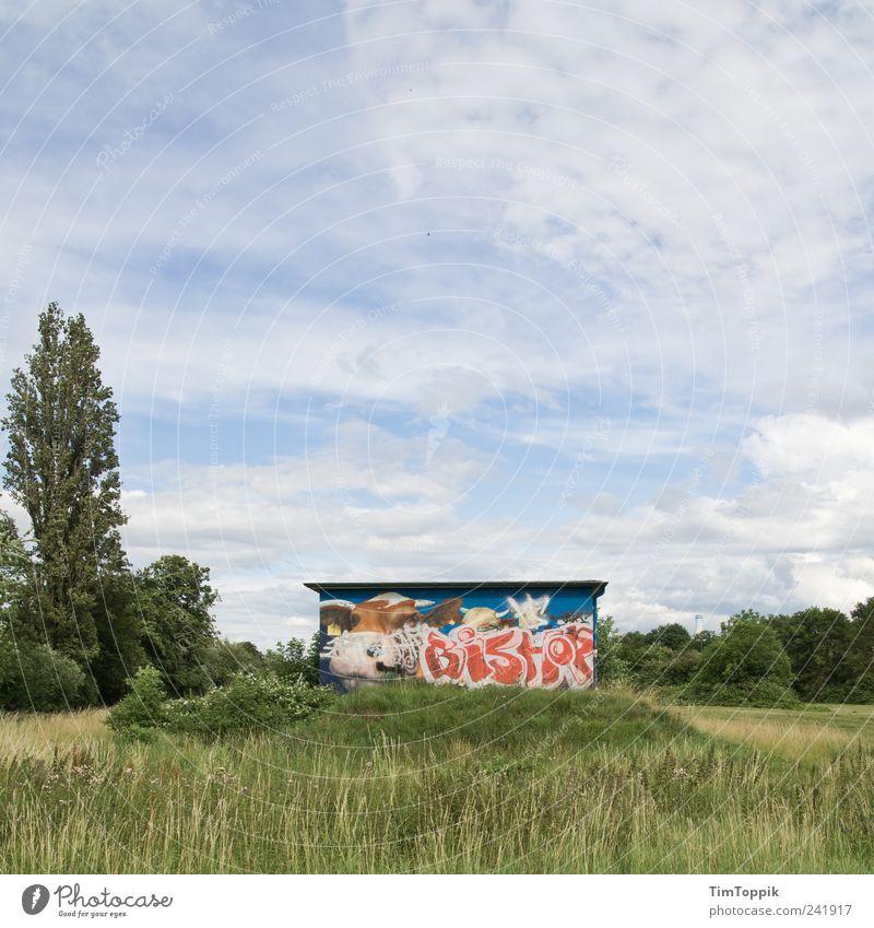 Kuhweide Wiese grün Weide Gras Graffiti Baum Hütte Sträucher Natur Farbfoto