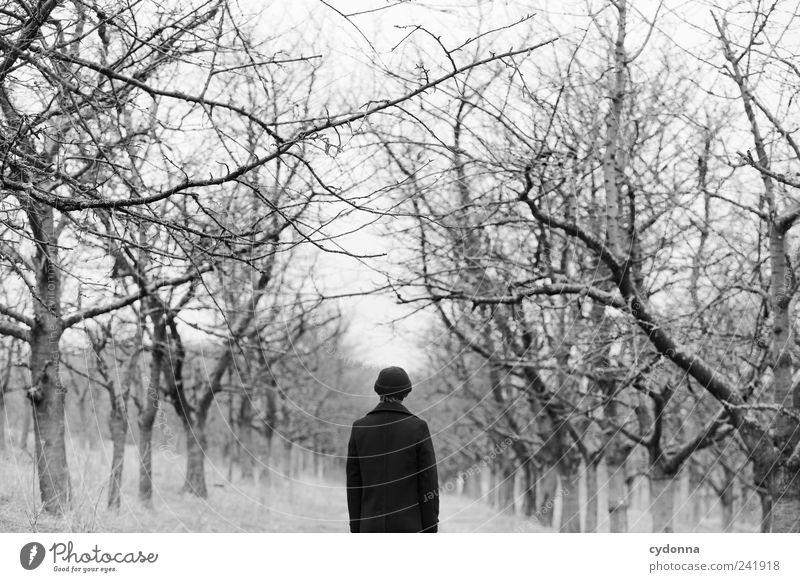 Rückblick Lifestyle elegant Erholung ruhig Ferne Freiheit Mensch Mann Erwachsene Umwelt Natur Landschaft Winter Baum Mantel Mütze Einsamkeit geheimnisvoll Leben