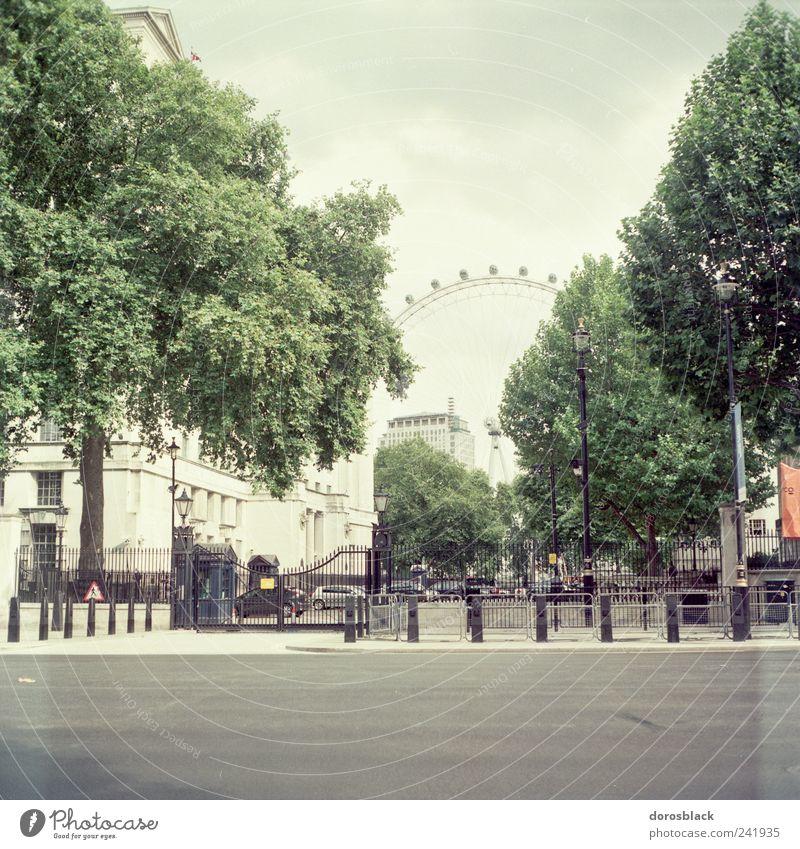 london 1. London London Eye England Großbritannien Europa Hauptstadt Altstadt Menschenleer Haus Platz Gebäude Sehenswürdigkeit ästhetisch analog Quadrat Baum