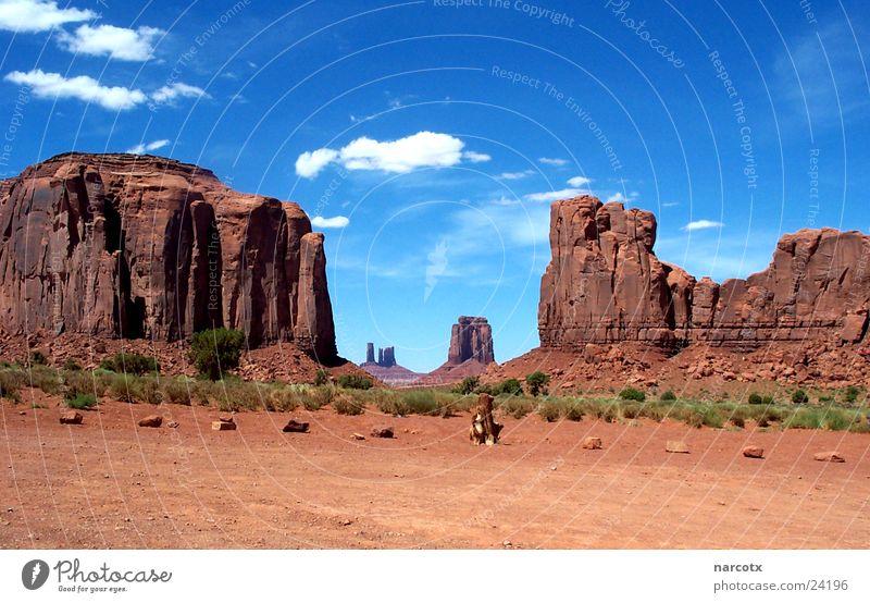 monument valley [1] Park groß Felsen Macht USA Amerika Blauer Himmel Filmindustrie Nationalpark Western Weste beeindruckend Monument Valley Südwest