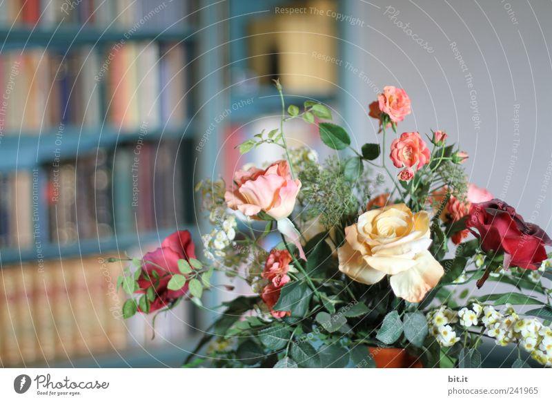 LESE - STOFF - BLUMEN Erholung Blume ruhig Blüte Stil Feste & Feiern Schule Wohnung Ordnung Dekoration & Verzierung Geburtstag Buch Hochzeit Kultur historisch