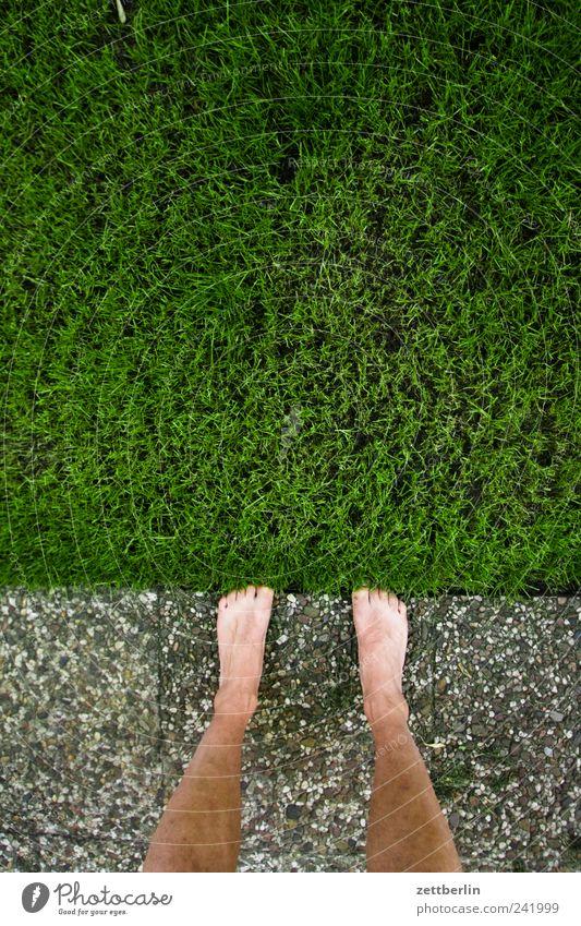 Rasenkante Mensch Natur Pflanze Sommer Ferien & Urlaub & Reisen Erholung Wiese Gras Garten Fuß Park Beine Umwelt Ausflug Wachstum Ecke