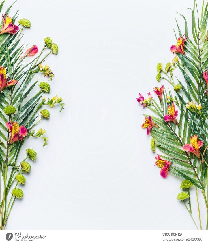 Tropische Palmenblätter und exotische BLumen Rahmen Natur Sommer Pflanze Blume Blatt Hintergrundbild Blüte Stil rosa Design Dekoration & Verzierung Blumenstrauß