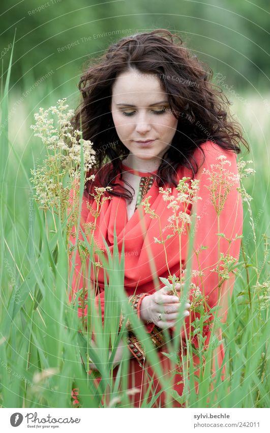 behutsam III Mensch Natur Jugendliche grün schön Pflanze rot ruhig Leben feminin Umwelt Gras Blüte Stil Erwachsene Zufriedenheit