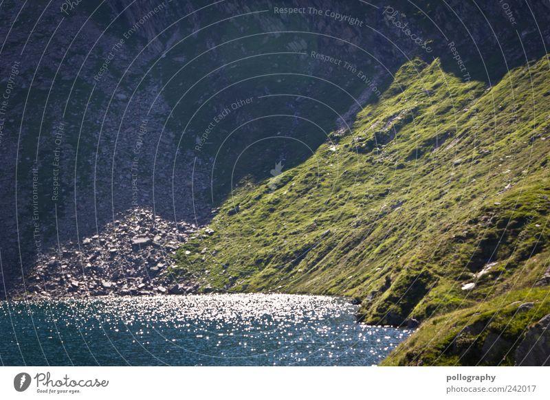 wonderful day Natur Wasser Pflanze Sommer Tier Gras Berge u. Gebirge See Landschaft Umwelt Schweiz Alpen Lebensfreude Moos Schönes Wetter Tal